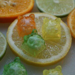 Citrus - Goopi Blind Bag